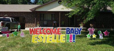 sedalia baby shower yard signs